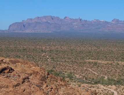 Looking back at King Valley and the road that brought us to the tanks. The Kofa mountains are in the distance.