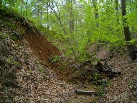 The landslide scar was still fresh!